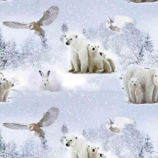 Talvised jääkarud jänkud kangas